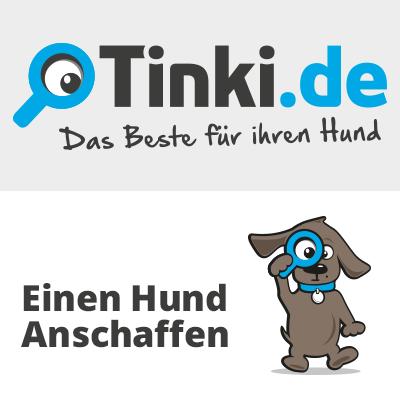 thumbnail-hund-anschaffen